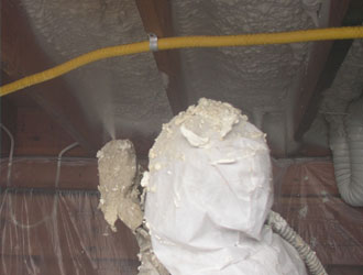 Wisconsin Crawl Space Insulation